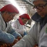 La nueva institucionalidad para el salario mínimo