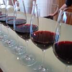 OMS: Chile es el país de América Latina con mayor consumo de alcohol por persona