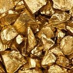 La fiebre del oro
