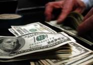 Tematica de Dolar