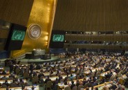 Consejo Nacional de la ONU