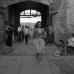150 películas nuevas se suman al catálogo de la Cineteca Virtual de la U. de Chile