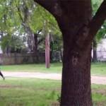 Nuevo video es difundido por la policía de EEUU de la muerte de Walter Scott
