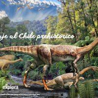 libro dinosaurios play.google. com