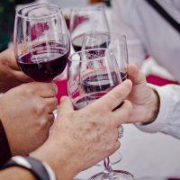 28 de Marzo de 2014/BUIN Un grupo de personas realiza un brindis con copas de vino, durante la inauguración de la 12° Fiesta de la Vendimia de Buin, realizada en el parque O'Higgins de dicha comuna. FOTO: HANS SCOTT/AGENCIAUNO
