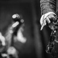19º FESTIVAL INTERNACIONAL DE JAZZ DE PUNTA DEL ESTE  Luis Perdomo Cuarteto Johnattan Blake / batería Hans Glawischnig /bajo Luis Perdomo / piano Mark Shim / saxo tenor – wind controller  Martin Wind Cuarteto  Homenaje a Bill Evans Bill Cunliffe /piano Joe La Barbera / batería Martin Wind / bajo Scott Robinson / saxotenor   Paquito D'Rivera presenta: Homenaje a Chano Pozo Alex Brown /piano Eric Doob / batería Zachary Brown / bajo Pernell Saturnino /percusión Diego Urcola / trompeta Paquito D'Rivera / saxo alto   FINCA EL SOSIEGO, Maldonado, Uruguay