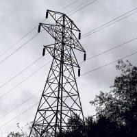 licitación electrica