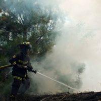 incendios-forestales1-820x500