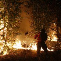 19 de Enero del 2017/CAUQUENES Un incendio Forestal de proporciones y que se encuentra sin control afecta  ala localidad de Cauquenes, al menos 7 casa y  un par de autos  han sido destruidas por la llamas  en la región del Maule. FOTO: AGENCIAUNO