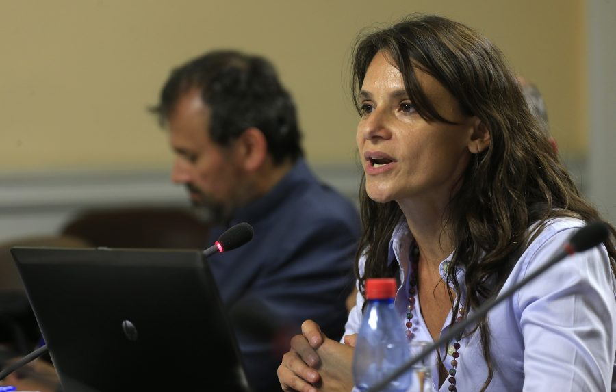 Ex presidenta del Consejo Fiscal Asesor.