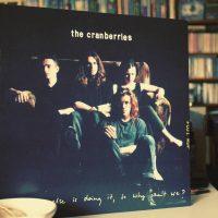 Everybody cranberries