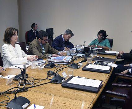 23 de Octubre de 2018/VALPARAISO El subsecretario Raul Figueroa , la ministra Marcela Cubillos , durante la comisión de educación que discuten el proyecto de ley que fortalece las facultades de los directores de establecimientos educacionales en materia de expulsión y cancelación de matrícula en los casos de violencia. FOTO:PABLO OVALLE ISASMENDI /AGENCIAUNOFOTO:PABLO OVALLE ISASMENDI /AGENCIAUNO