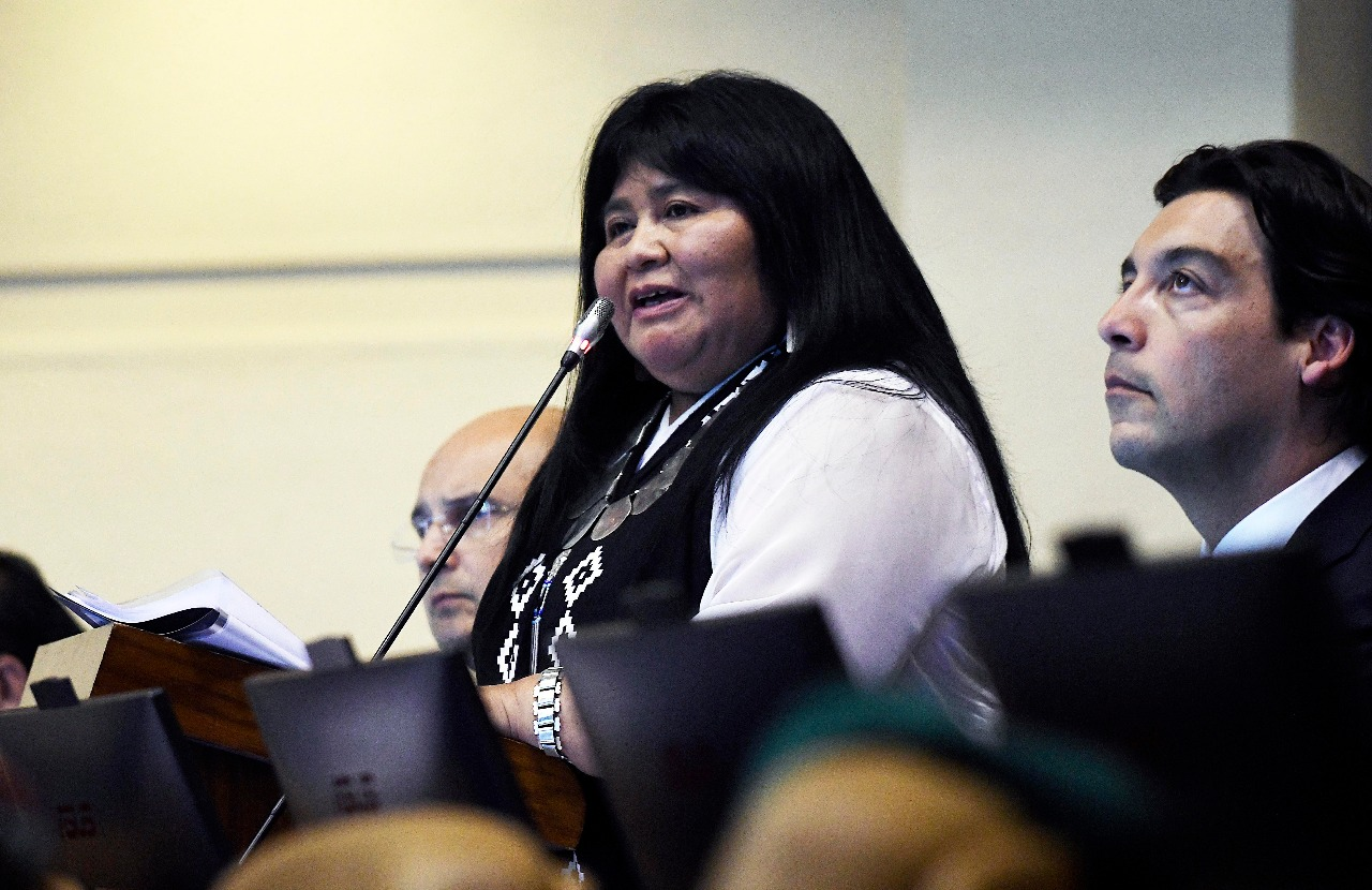 Emilia Nuyado por interpelación a ministro Andrés Chadwick