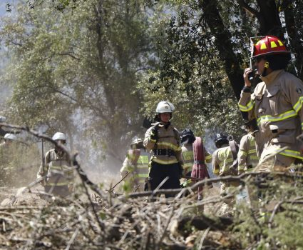 3 de Enero del 2018/SANTIAGO Un incendio forestal afecta a la ladera del cerro Manquehue en el sector de Santa Maria de Manquehue. FOTO: RODRIGO SAENZ/AGENCIAUNO