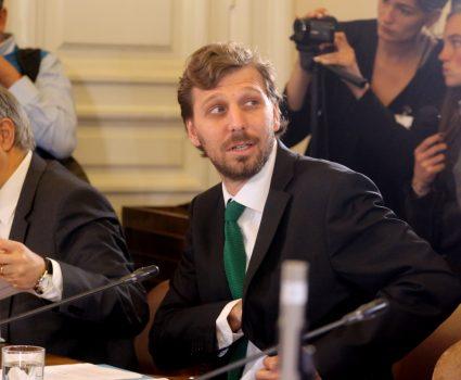 Felipe Riesco subsecretario ley delitos ambientales