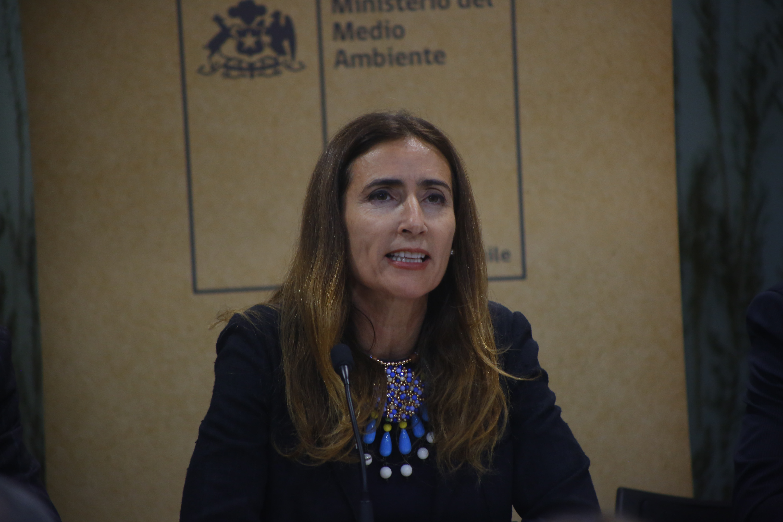Carolina Schmidt