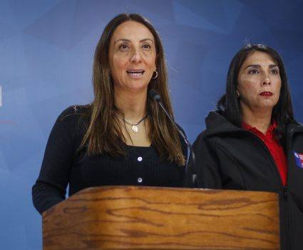 Cecilia Pérez, vocera de Gobierno