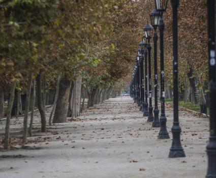 Parque Forestal cuarentena