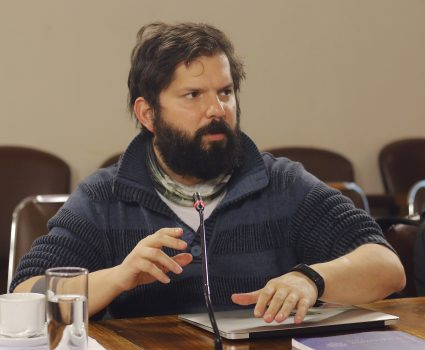 Diputado Gabriel Boric