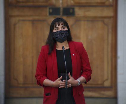 Izkia Siches, presidenta del Colegio Médico