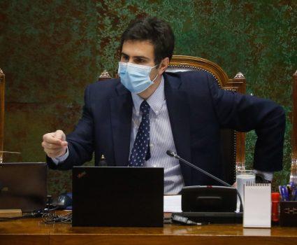 Presidente de la Cámara de Diputados, Diego Paulsen