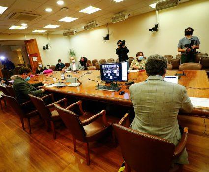 Comisión de Constitución Cámara de Diputados