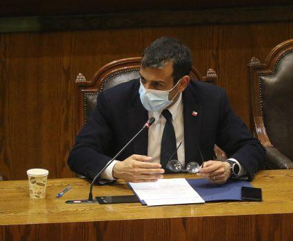 Rodrigo Delgado, ministerio del Interior